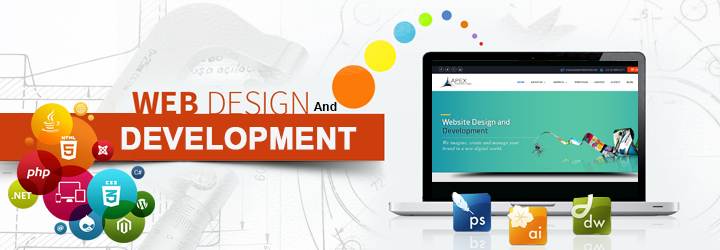 Why Are Web Development Companies Important For Your Business?